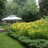 Lovely heritage gardens