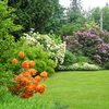 Lush heritage gardens