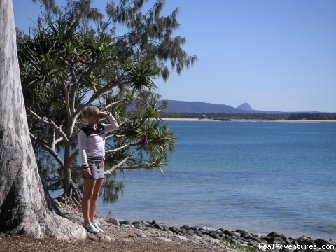 Noosa National Park miles of white sandy beaches - In the Heart of the Noosa Hinterland