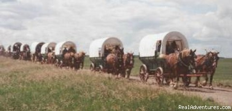 Covered Wagons on the trail. (#2 of 14) - Family Adventure on Genuine Covered Wagon Train