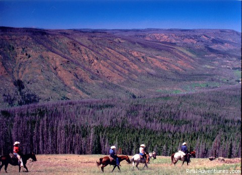 Wilderness Horseback Pack Trips