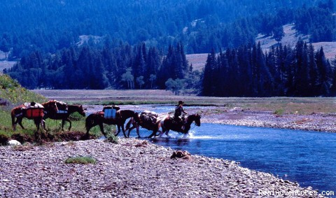 Soda  Butte - Wilderness Horseback Pack Trips