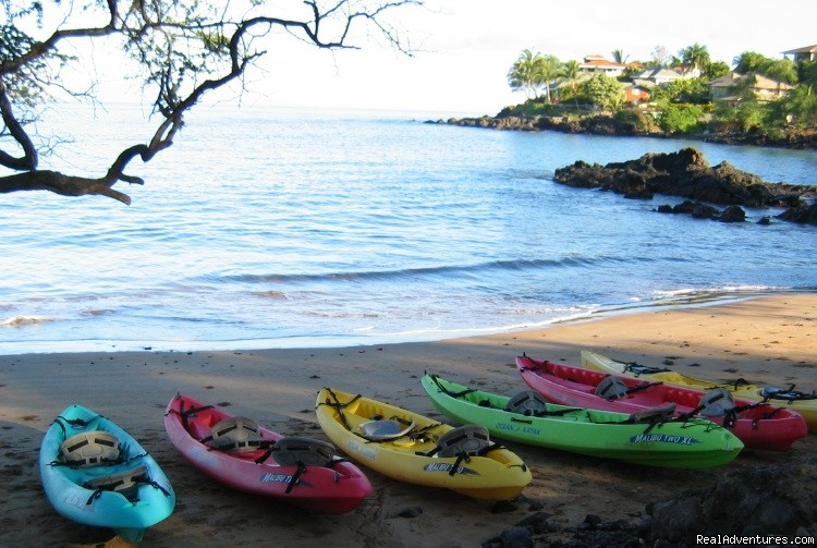 Let's go kayaking! | Image #1/3 | Maui, Hawaii  | Sight-Seeing Tours | Kayak and Snorkel eco-adventures in Maui