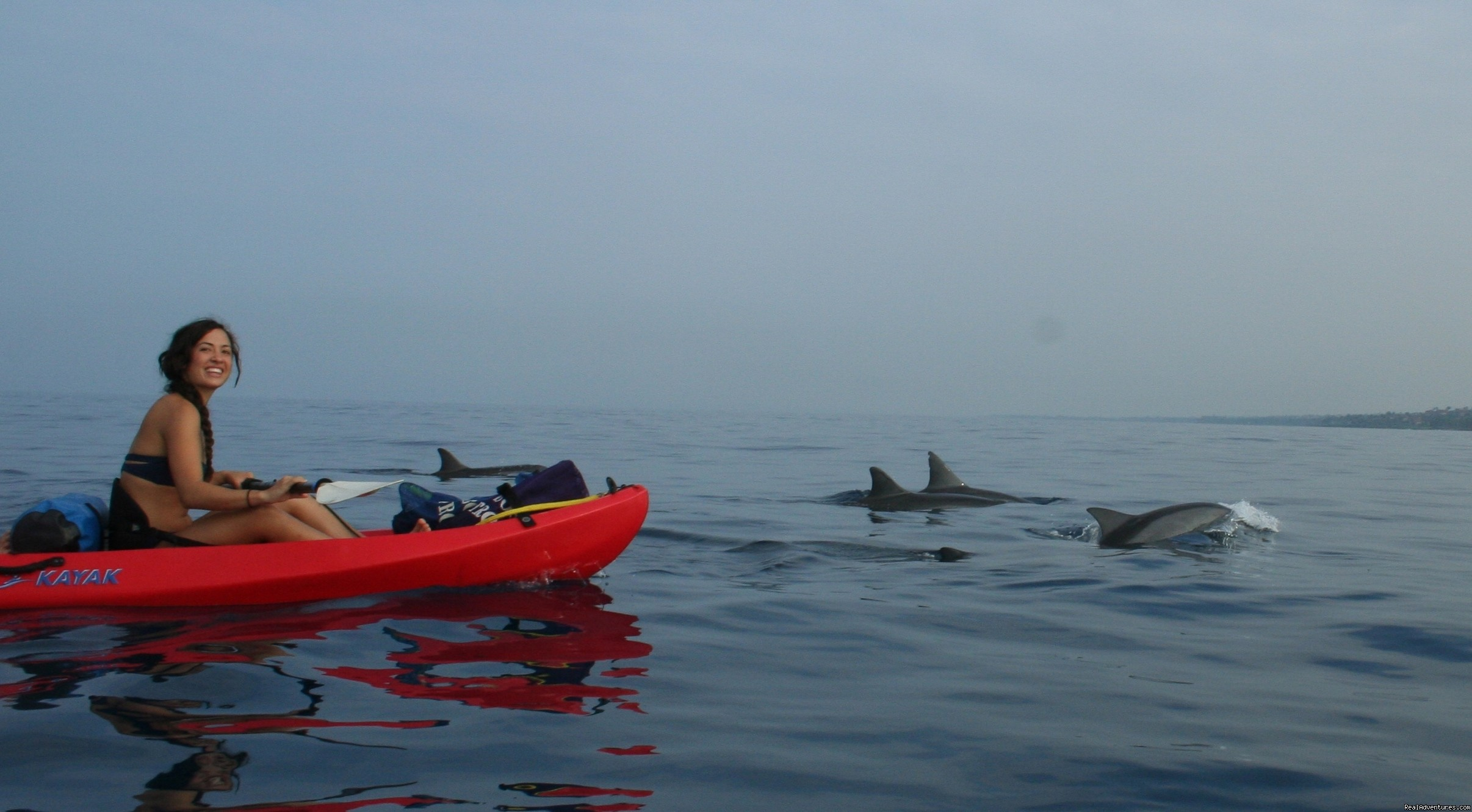 Kayak with Dolphins | Image #3/3 | Kayak and Snorkel eco-adventures in Maui