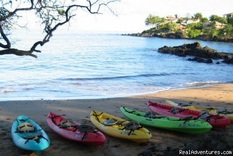 Kayak and Snorkel eco-adventures in Maui
