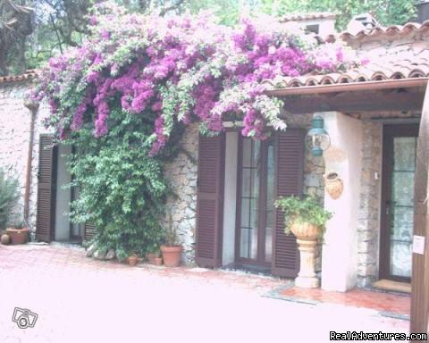 Rental Home Riviera De Flowers E Palmen casa  antica