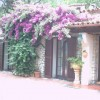Rental Home Riviera De Flowers E Palmen Savona, Italy Vacation Rentals