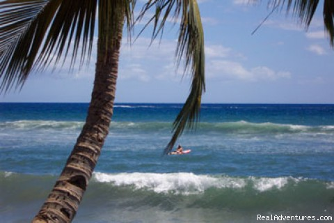 Maui Condo Rental $65, Pool, Lovely Maui Condo: Our daughter, paddling out to the surf!