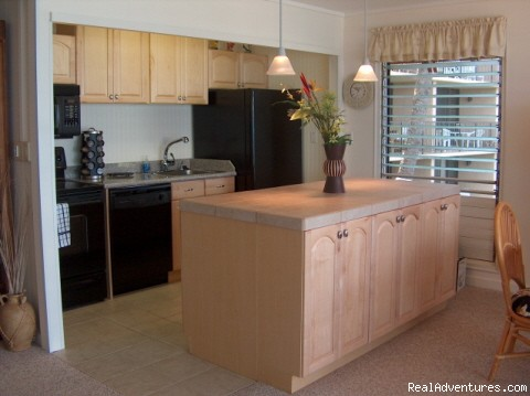 Kitchen - Beachfront Maui Condo 25 Feet from Water