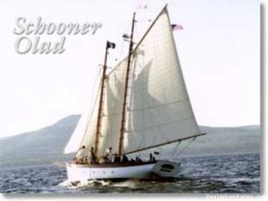 Day Sailing & Custom Charters on the Schooner Olad Sailing & Yacht Charters Camden, Maine
