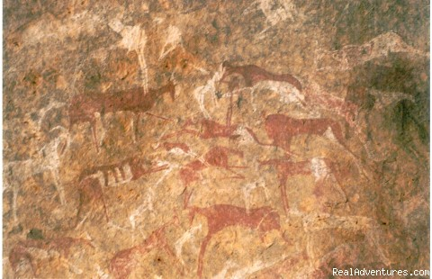 Rock art - Alhassi Tours - Desert Expedition