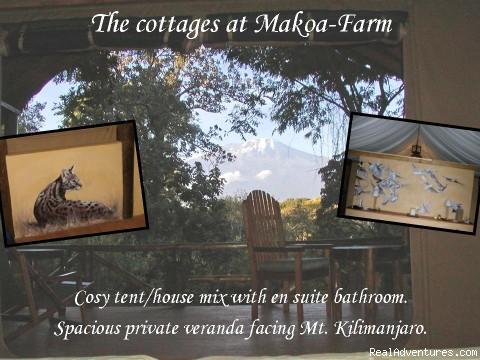 Cottages at Makoa-Farm - Horseback adventures on the Slopes of Kilimanjaro