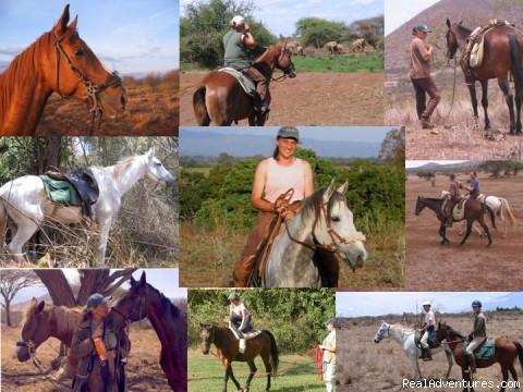 - Horseback adventures on the Slopes of Kilimanjaro