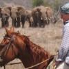 Horseback adventures on the Slopes of Kilimanjaro