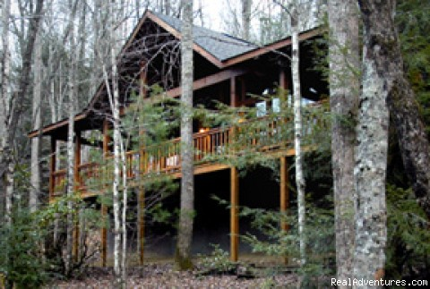 Romantic Log Cabin In Woods Near Nantahala Lake: Secluded cabin in the woods