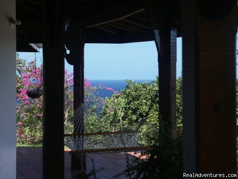 View from the villa | Image #8/23 | Englishman's bay,Parrot estate. Romantic adventure