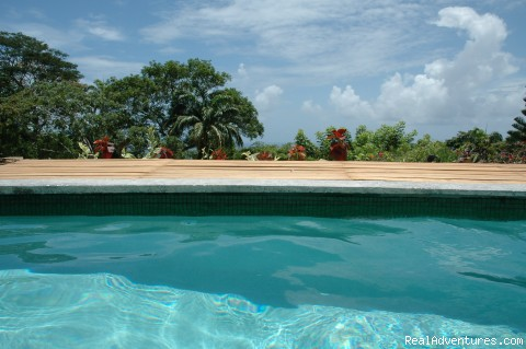 Pool view - Englishman's bay,Parrot estate. Romantic adventure