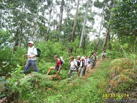 Trekking in Sri Lanka - Sri Lanka Trekking Nature Holidays