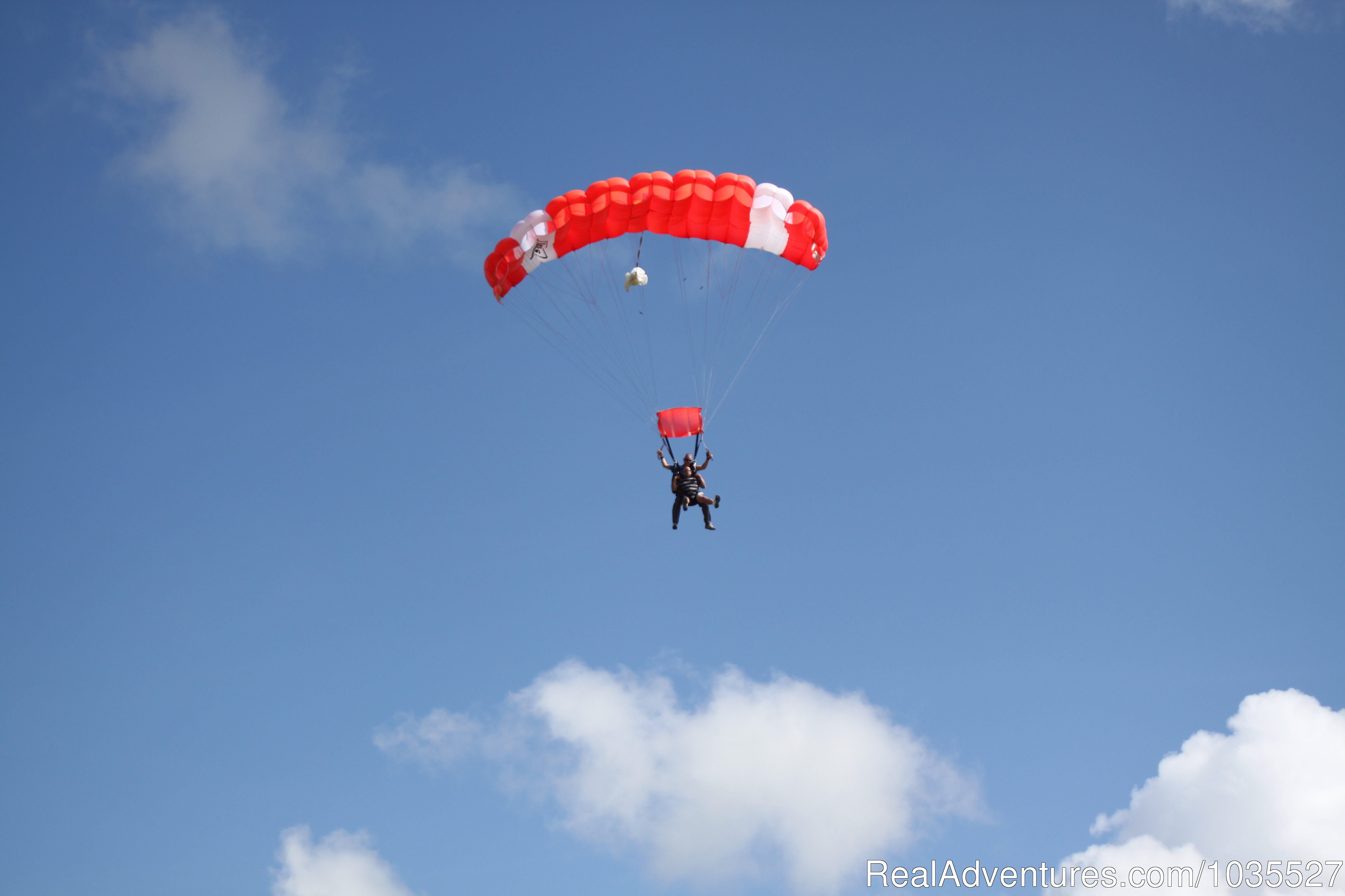 Tandem on final to land | Image #10/13 | Skydive Southwest Florida Club