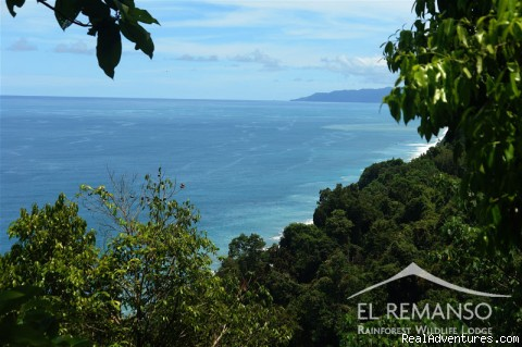 Luxury Rainforest Wildlife Lodge - Osa Peninsula Bellavista - View from one of our trails