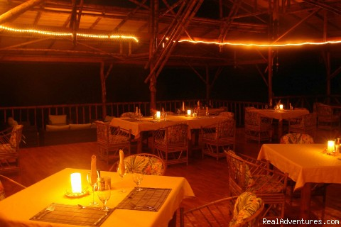 Restaurant - Luxury Rainforest Wildlife Lodge - Osa Peninsula