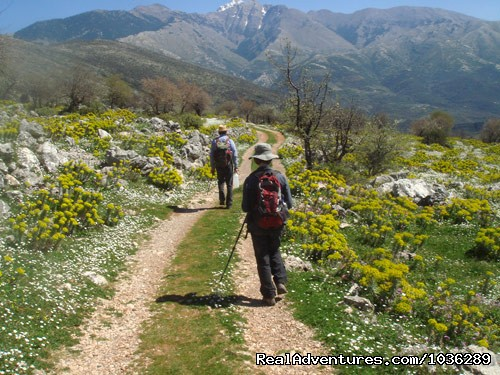 Walking holidays - Yoga, walking and holistic holidays in Greece.
