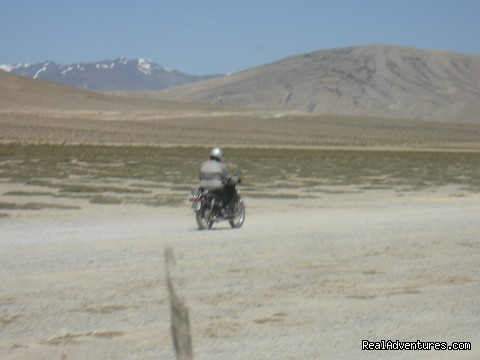 Pang Plains 14000 feet - Motor Cycle Tours to India , Nepal - 2012 & 2013