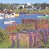 Black Duck Inn - the way Maine used to be Corea Harbor - looking into the harbor