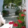 Cozy Rosy Bed & Breakfast Angistri, Greece Bed & Breakfasts