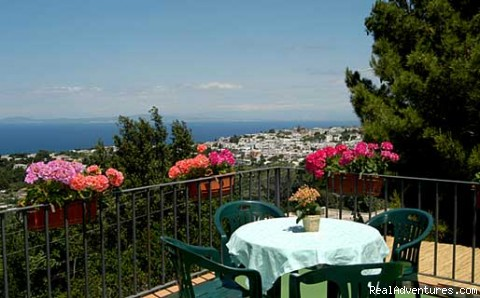 Alle Ginestre Capri  Bed And Breakfast Photo #1