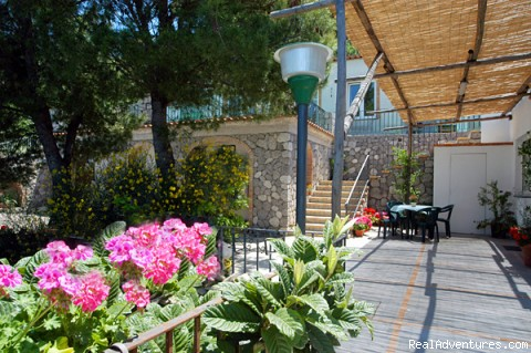 - Alle Ginestre Capri  Bed And Breakfast
