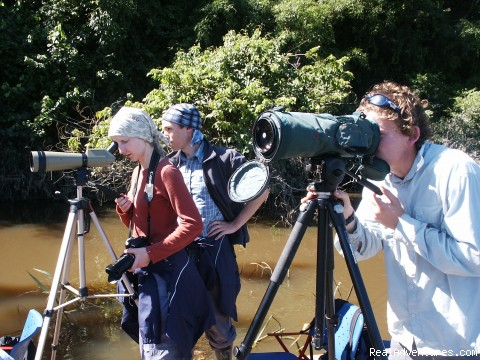 Observing Birds At The Lake (#5 of 6) - Explore Manu Rainforest and go Trekking in Peru