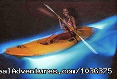 LUMINOUS LAGOON - Adventure of a life time - Fly Drive Jamaica
