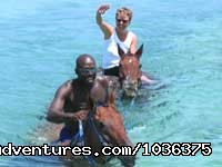 HORSE BACK RIDE & SWIM - Adventure of a life time - Fly Drive Jamaica