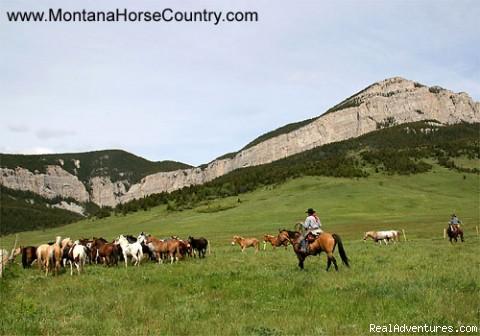 Wrangling horses.... - Horseback adventures in Montana
