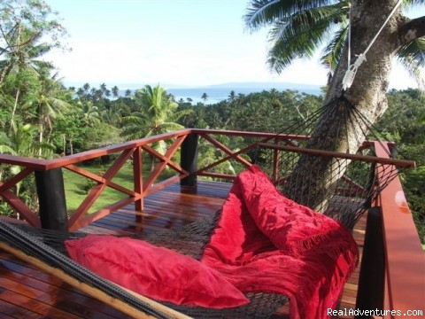 Tropical & Exotic Fiji Islands Hideaway Hammock over the treetops