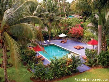 Swimming Pool - Tropical & Exotic Fiji Islands Hideaway