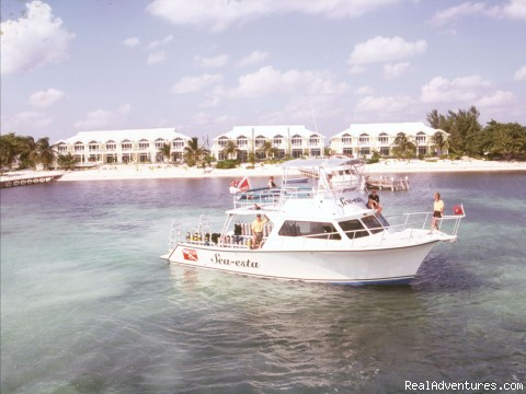 Little Cayman Island - Conch Club Condos & Divers