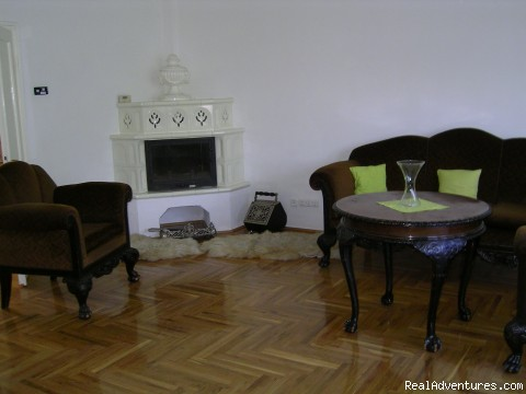 Take a break in Budapest - new EU capital: Fire place in the living room
