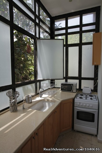 Cook and admire a native fruit tree - Stylish Vacation Apartments in Jerusalem