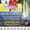Power of  Venezuelan Oriente Canada, Quebec Sight-Seeing Tours