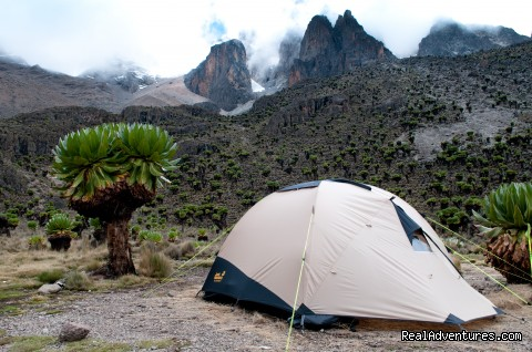 Last rest before summit at Shipton's camp - Climbing Mt Kenya/kilimanjaro/wildlife Safaris