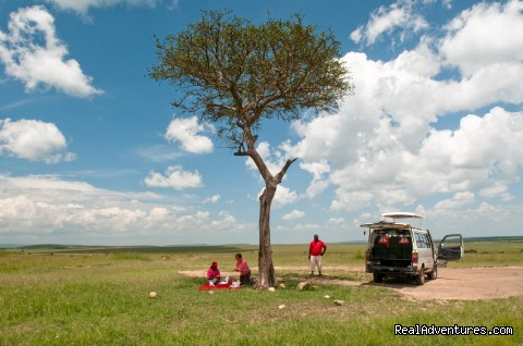 Picnic in the Masai Mara - Climbing Mt Kenya/kilimanjaro/wildlife Safaris