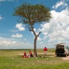 Picnic in the Masai Mara