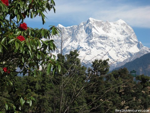 High Mountains and Flowers - Trekking in Indian Himalayas