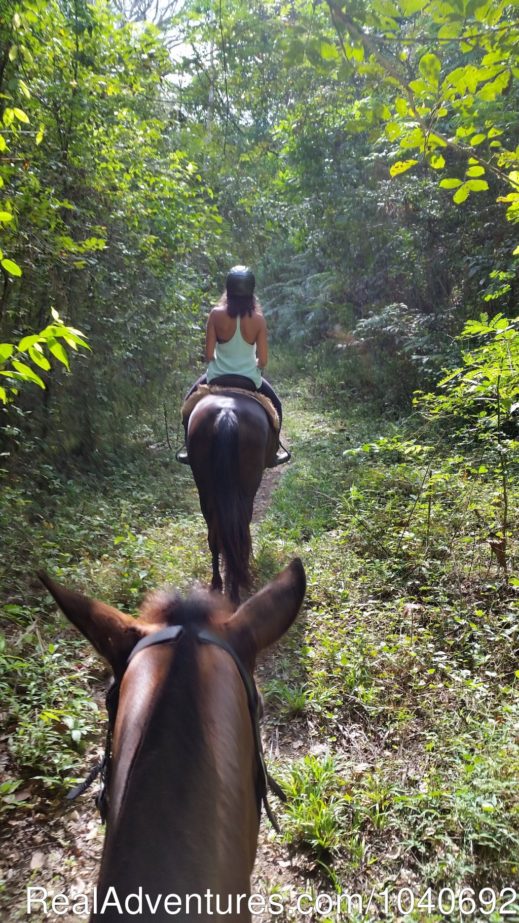 Trail Ride | Image #1/13 | Playa Hermosa, Costa Rica | Horseback Riding | Horseback riding Jaco with Discovery Horse Tours