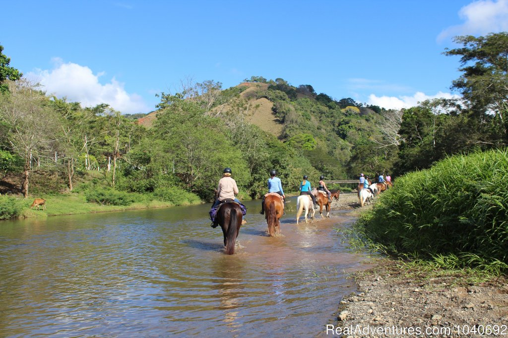 El Rio Ride | Image #4/13 | Horseback riding Jaco with Discovery Horse Tours