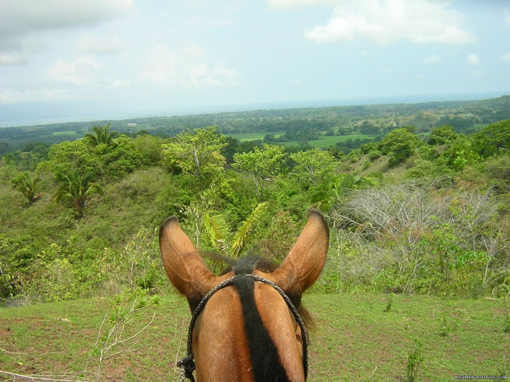 Checkout that View | Image #12/13 | Horseback riding Jaco with Discovery Horse Tours