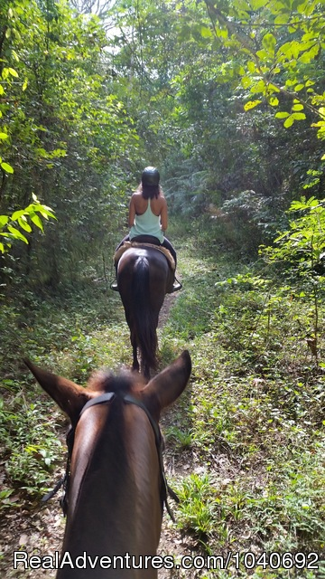 Full Flight - Horseback riding Jaco with Discovery Horse Tours