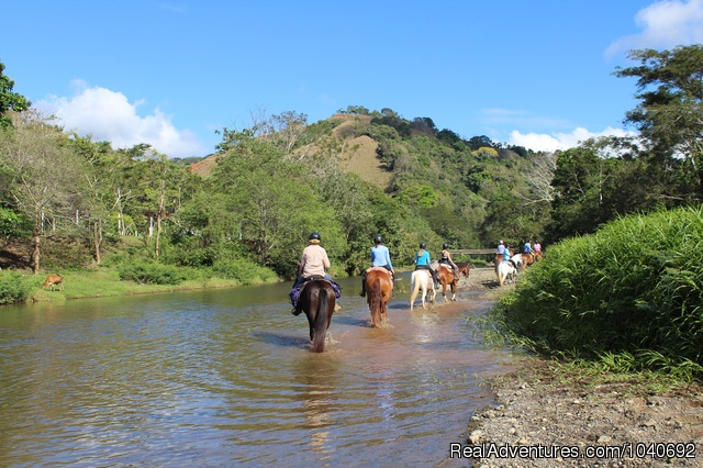 Deserted beach adventure (#5 of 23) - Horseback riding Jaco with Discovery Horse Tours